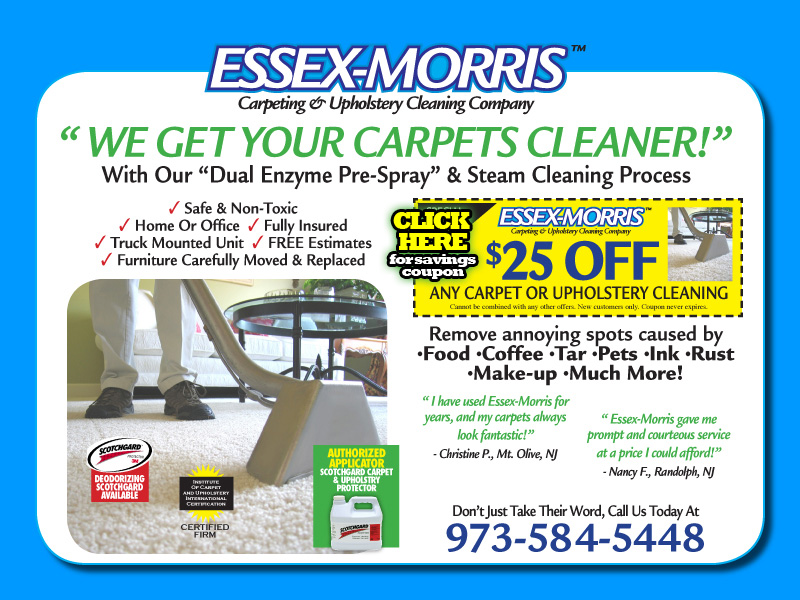 Essex Morris Carpet & Upholstery Cleaning, Serving Essex, Morris, NJ, professional carpet cleaning, essex-morris, scotchgard, carpets pet stains, flanders, ...